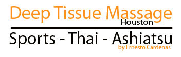 Deep Tissue Massage Houston Logo